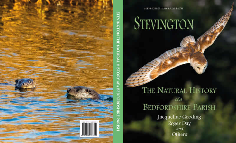Stevington The Natural History of a Bedfordshire Parish